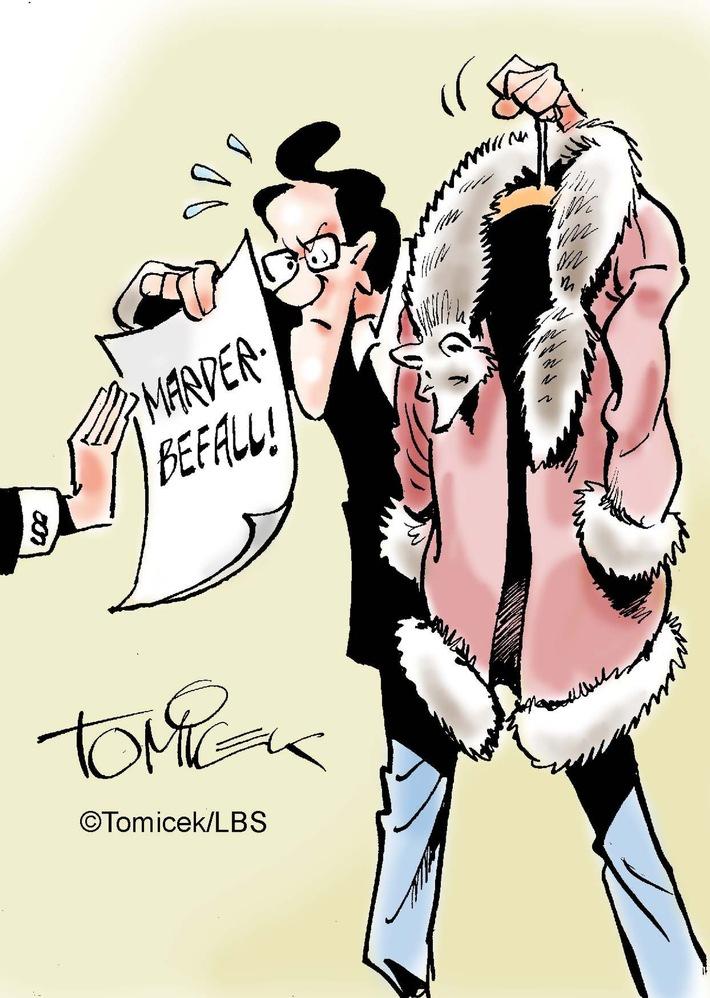 in Achtung, Marder!Bei akutem Befall eines Objekts muss der Immobilienverkäufer informieren