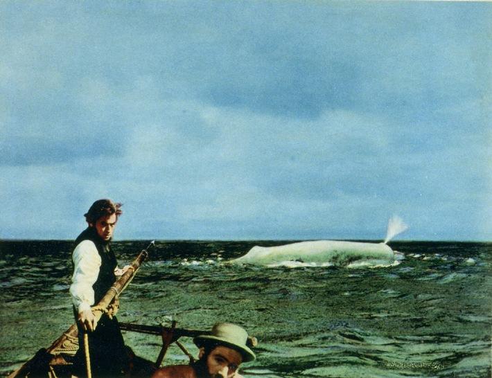 Harter Dreh bei 'Moby Dick': Der Todeskampf von Gregory Peck // TELE 5 zeigt John Hustons Abenteuer-Klassiker am Sonntag, 14. März, um 20.15 Uhr