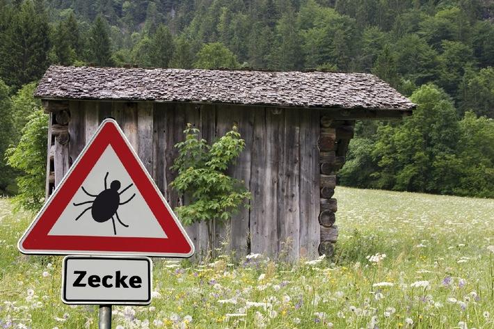 Zecken sind gefährlich / Im zeitigen Frühjahr erwachen die Lebensgeister der Zecken (mit Bild)