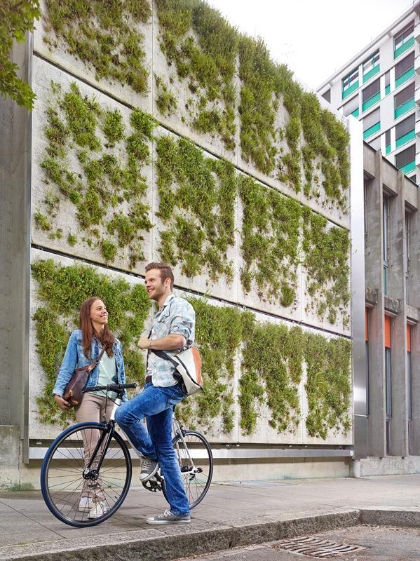Des façades vertes pour un climat urbain sain