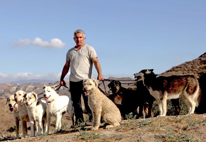 """König der Hunde! Der berühmteste Hundetrainer der Welt startet mit neuer Show: """"Cesar Millan: Auf den Hund gekommen"""" ab 9. Juli 2014 um 20.15 Uhr auf sixx"""