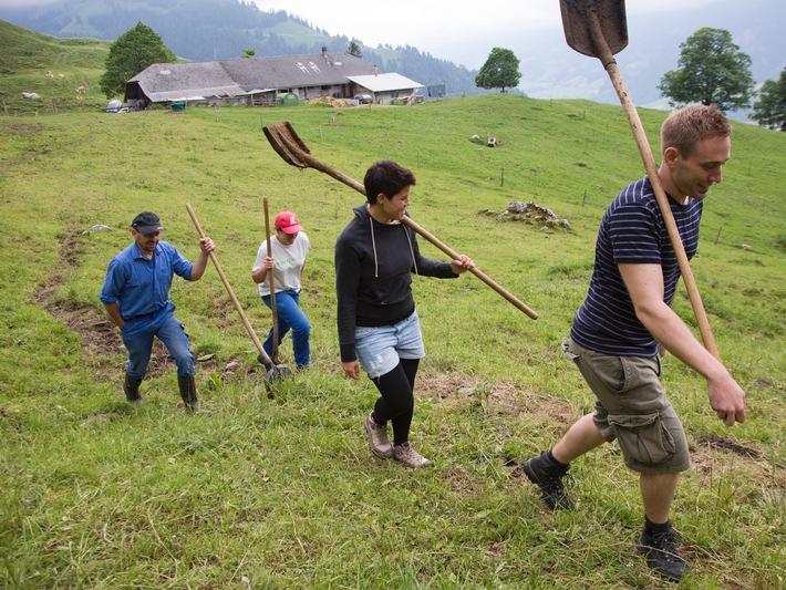 Caritas-Bergeinsatz sucht 800 Freiwillige für Sommermonate /  Schweizer Bergbauern benötigen Hilfe von Freiwilligen