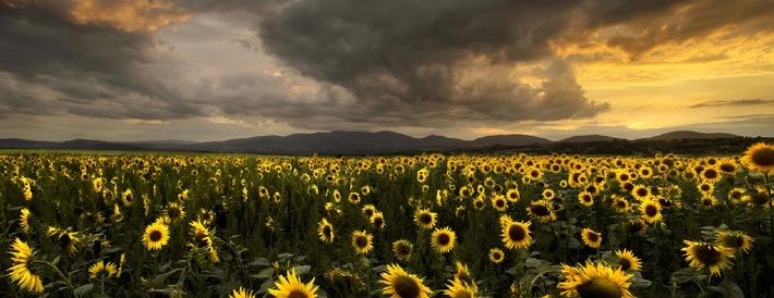 Europe is beautiful II / CEWE startet erneut internationalen Fotowettbewerb (BILD)