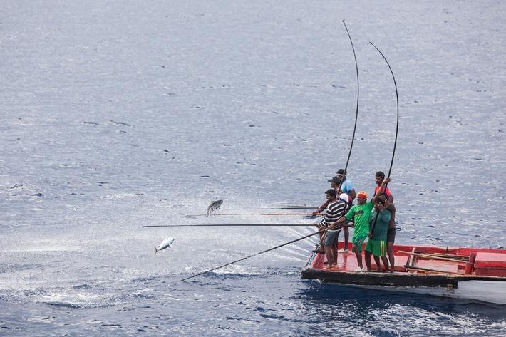 Migros: Dosen-Thunfisch mit gutem Gewissen konsumieren