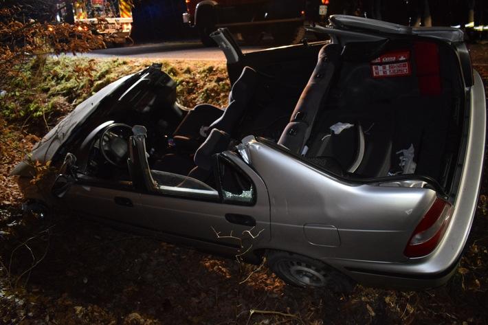 POL-NI: Tier verursacht schweren Verkehrsunfall