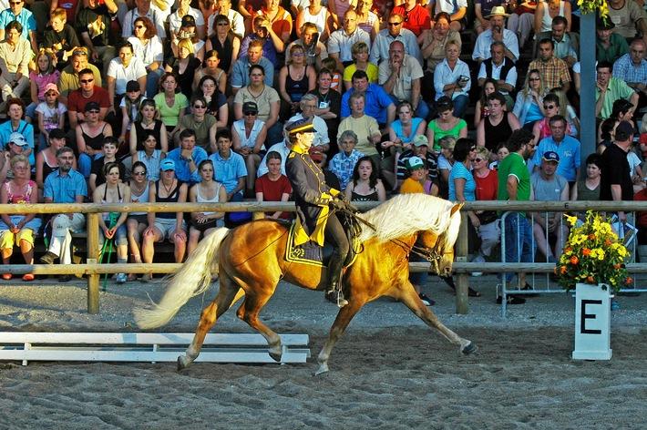 Das goldene Pferd mit dem goldenen Herz - BILD
