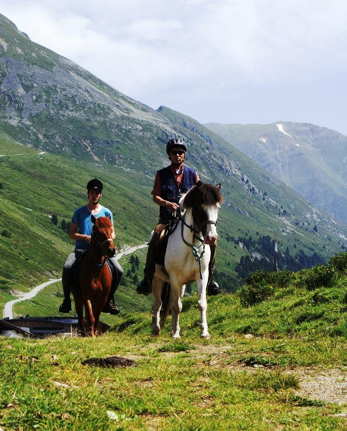 Erfolgreiches Höhentraining für Pferde und geführte Trekkingtouren -  Pferde stehen im Kühtai hoch im Kurs