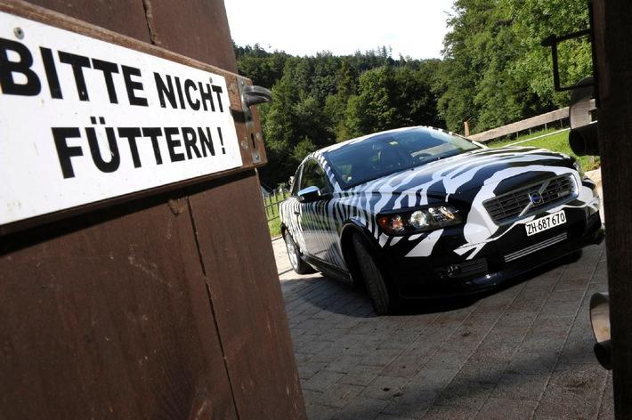 Nouveau film décoratif exclusif pour les clients de la Volvo C30