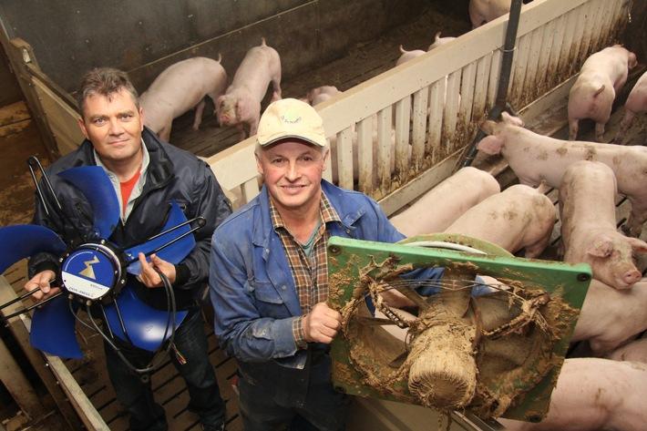 18 Jahre EC-Technik im Schweinestall - Übers ganze Jahr betrachtet betrug die Einsparung 80 Prozent / Jetzt wurden die Ventilatoren durch noch sparsamere und leisere ersetzt