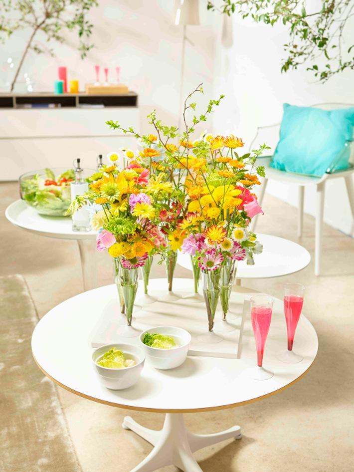 Fröhliche Momente mit Chrysanthemen / Die Chrysantheme als blühender Gast auf der Sommerparty