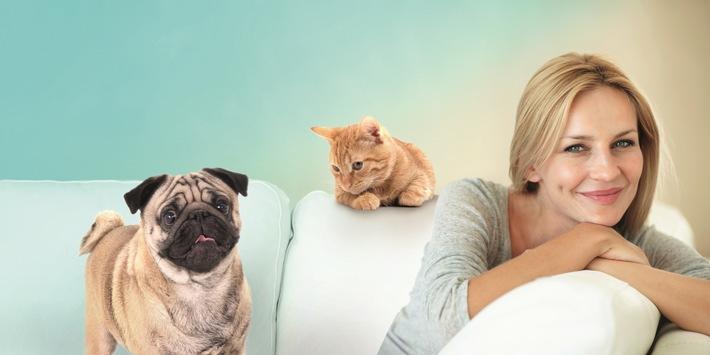 Tierkrankenversicherung für Hunde und Katzen: online vergleichen und abschließen