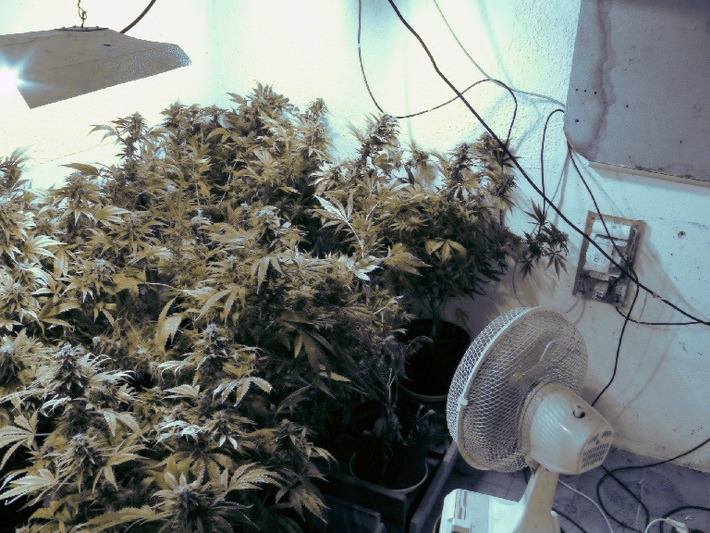 POL-MFR: (1310) Professionelle Marihuana-Aufzuchtanlage entdeckt - Bildveröffentlichung
