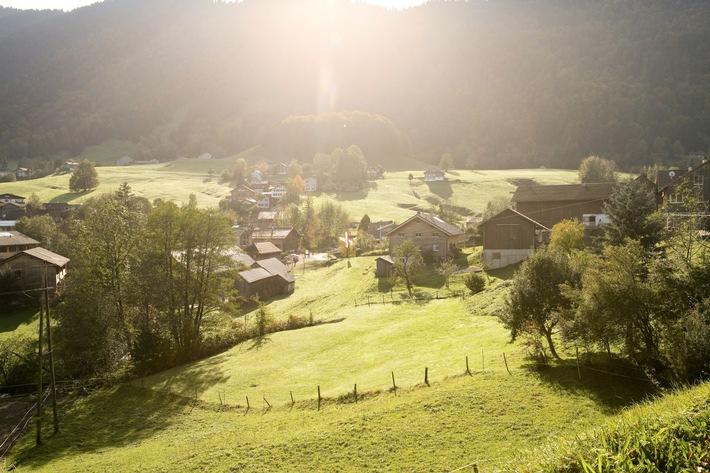 Bregenzerwald: Handwerk+Form - BILD