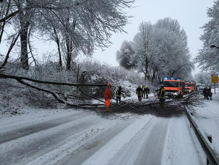 FW-D: Baumschäden durch Schneelast - Abschlussmeldung