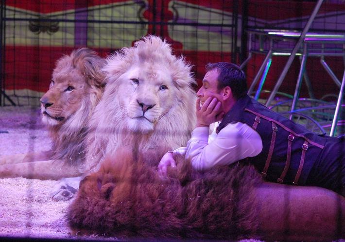 Weihnachtszirkusse 2015/16: Triumph des traditionellen Zirkus mit Wildtieren