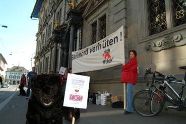 Protest gegen Entscheid des Zürcher Gemeinderates: Junge Bären sind keine Wegwerfware!