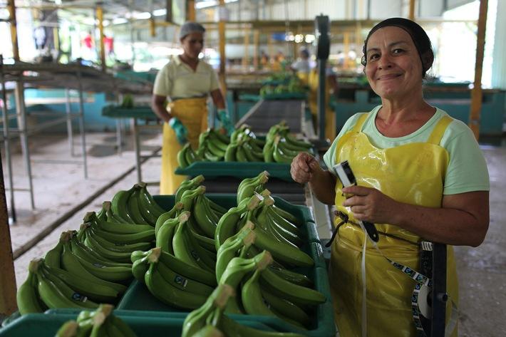 Jahresergebnis 2015 der Max Havelaar-Stiftung (Schweiz) / Schweizerinnen und Schweizer kaufen für über 500 Millionen Franken Fairtrade-Produkte