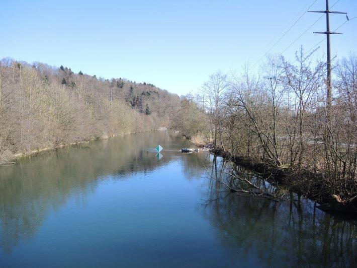 Canal de l'Aar à Wangen an der Aare / Fonds écologique BKW:revitalisation du paysage fluvial de l'Aar
