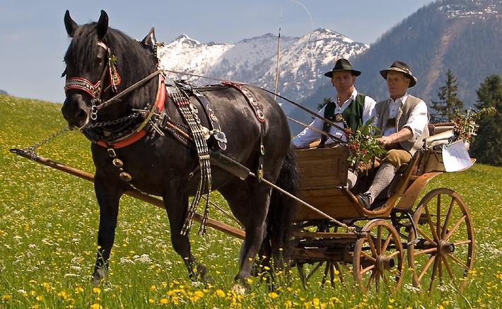 3. Abtenauer Pferdekutschengala - BILD