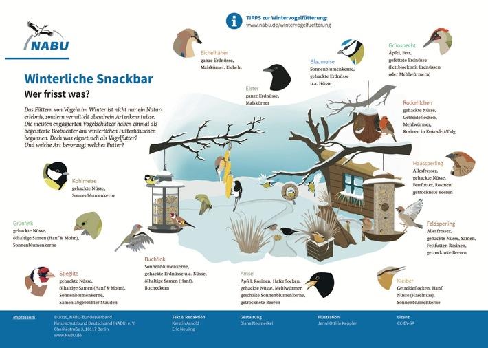 """NABU: Viele Menschen, wenig Vögel / Zwischenergebnisse zur """"Stunde der Wintervögel"""" aus über 56.000 Gärten"""