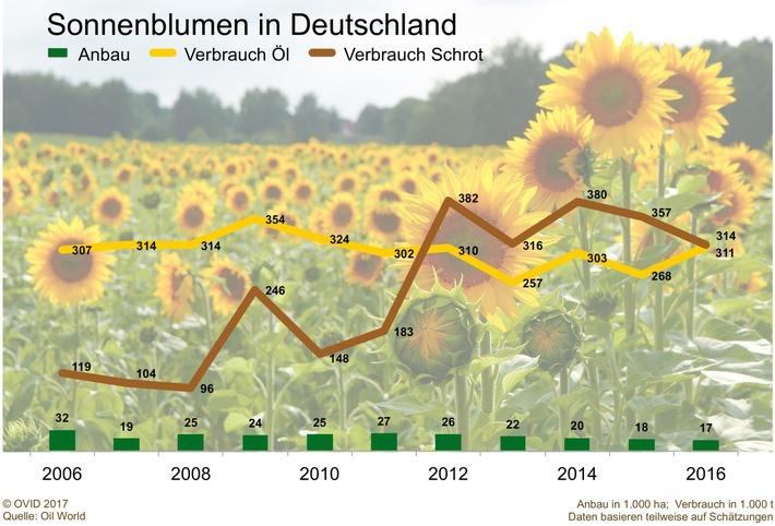 Deutschland, (k)ein Sonnenblumenland?