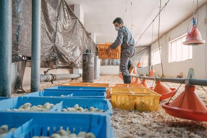 Crise syrienne: les enfants sont de plus en plus contraints à travailler et recrutés pour combattre