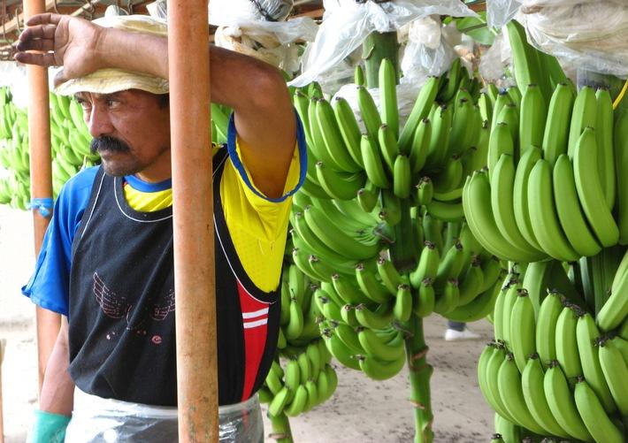 claro fair trade AG: Martin Dahinden und Georges Wenger jurieren Fotowettbewerb zum Fairen Handel