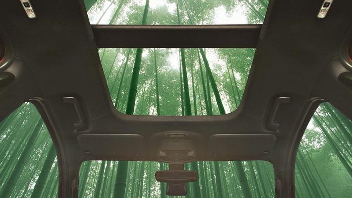 Bambus - ein superstarker und schnell nachwachsender Werkstoff ist potenzieller Bestandteil künftiger Ford-Fahrzeuge
