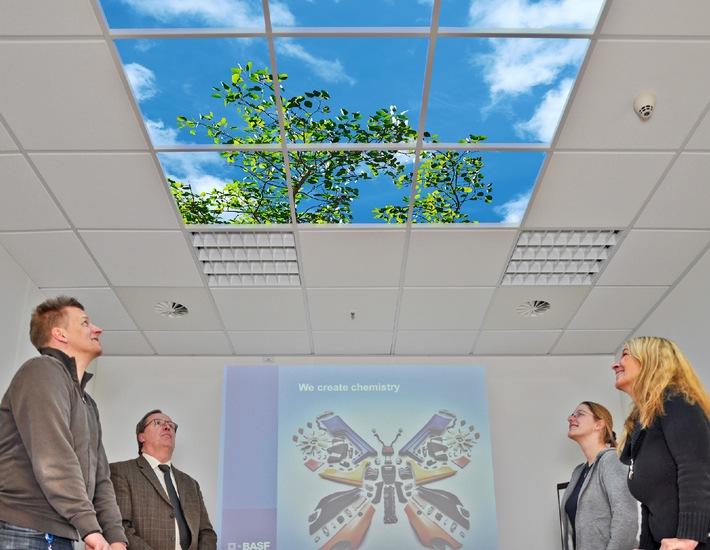 Licht verbessert Produktivität am Arbeitsplatz