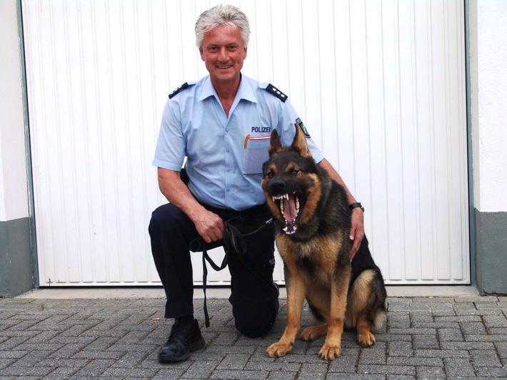POL-REK: Sein Name ist Cooper, Polizeidiensthund Cooper! - Rhein-Erft-Kreis