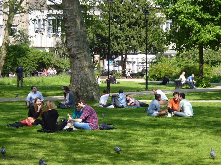 Zukunftsfähiges Stadtklima beginnt bei den Grünetats in den Kommunen