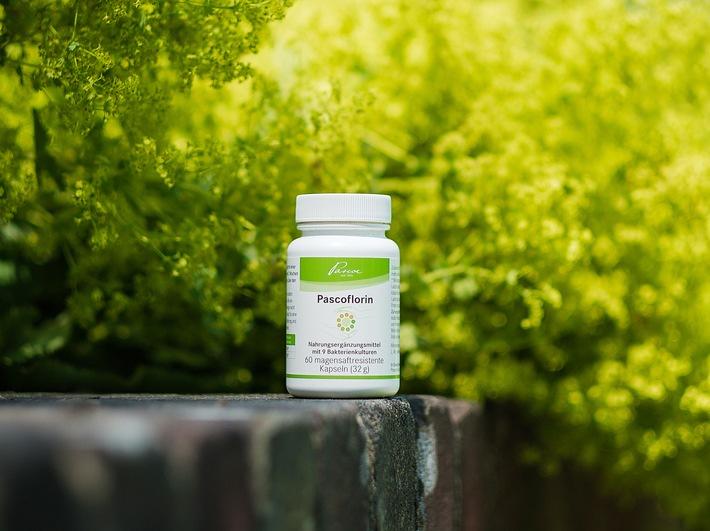 Neu: Pascoflorin® - Ab sofort in Ihrer Apotheke! / Mit 9 speziell ausgewählten Milchsäurebakterienkulturen