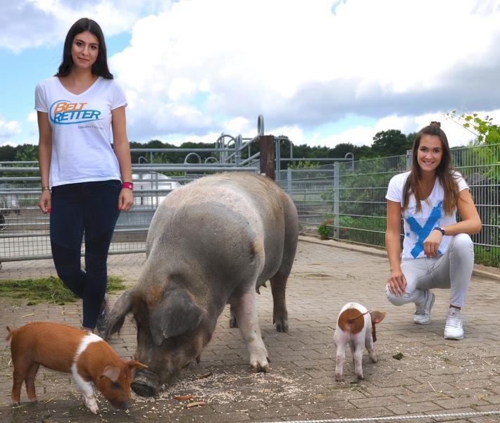"""BELTRETTER fördern """"Dänische Protestschweine"""""""