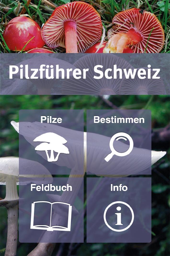 Pilzführer Schweiz App / Jetzt neu: App für Schweizer Pilzfreunde im Haupt Verlag erschienen