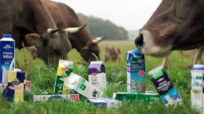 """Glaubenskrieg um Milchprodukte / SWR Dokumentation: """"betrifft: Milch - wie gesund ist sie wirklich?"""" / Mittwoch, 25. Oktober 2017, 20:15 Uhr, SWR Fernsehen"""