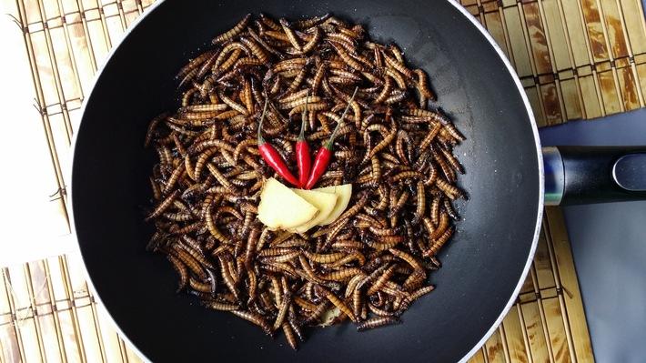 Insekten-Gerichte im Restaurant: Exotischer Genuss oder kulinarischer Alptraum?
