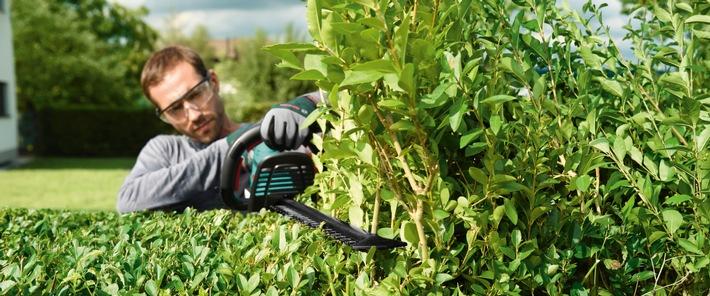 Gartenfreuden ohne Rückenschmerzen / Profitipps für Hobbygärtner