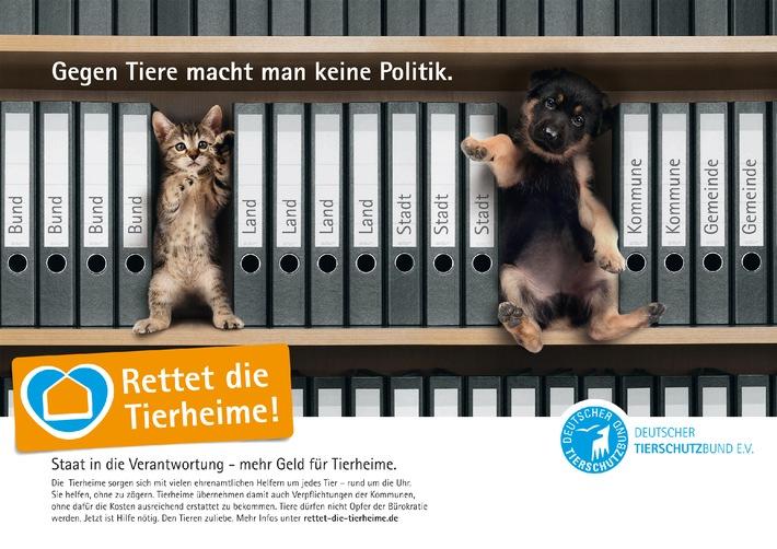 """Leitmotto zum Welttierschutztag 2010: """"Rettet die Tierheime!"""" (mit Bild)"""