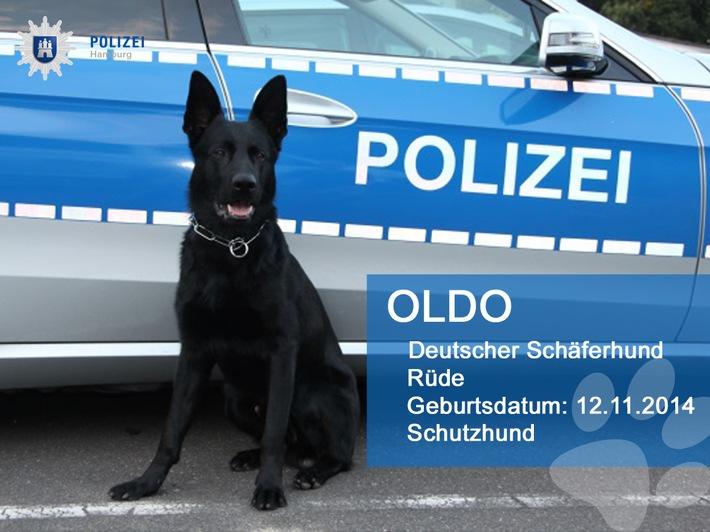 POL-HH: 170110-2. Landeskriminalamt klärt Serie von Wohnungseinbrüchen im Hamburger Westen auf