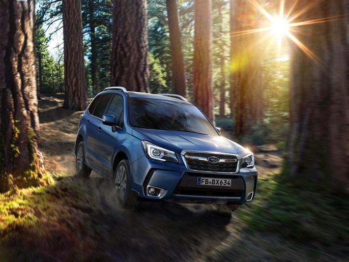 Subaru Forester und Outback überarbeitet / Allrad-Klassiker starten ins neue Modelljahr