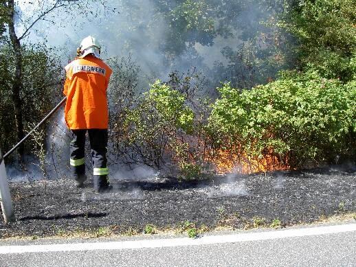 FW-LFVSH: Feuerwehr warnt: Gefahr von Wald- und Flächenbränden steigt!