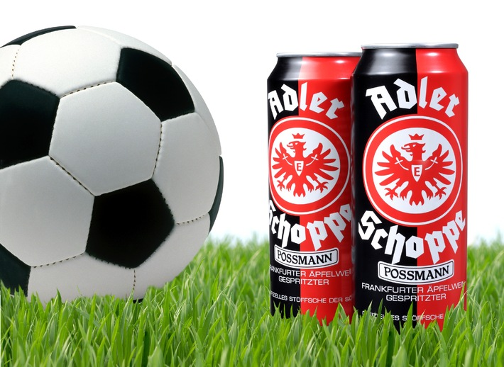 Getränkedosen bringen den Ball ins Rollen (mit Bild) / Ball Packaging Europe produziert Dosen-Sondereditionen zur Fußball-Weltmeisterschaft