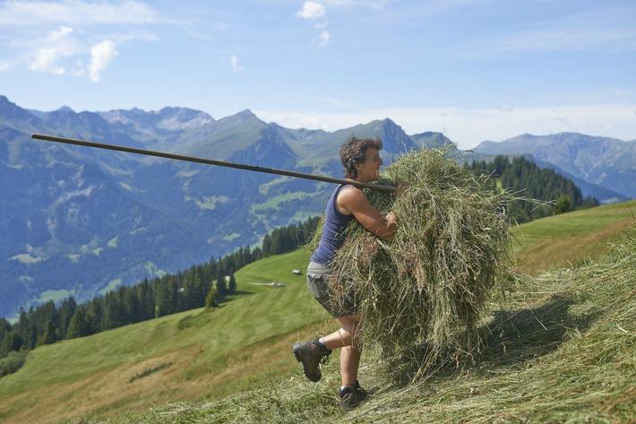 Caritas vermittelt Freiwillige an Bergbauernfamilien in Not / Schweizer Bergbauern in Not brauchen Hilfe von 800 Freiwilligen