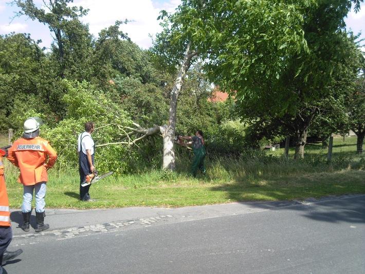 POL-HI: Elze - Wittenburg: Baum droht auf Fahrbahn zu stürzen