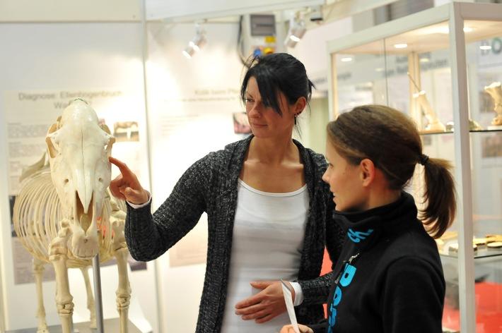 Von traditionellen Heilmethoden bis zu Pferdemedizin 2.0: HIPPOLOGICA Berlin stellt die Pferdegesundheit in den Fokus