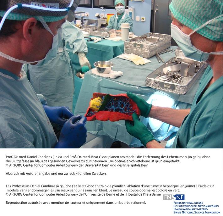 SNF: Bild des Monats April 2009: Individuelle dreidimensionale Modelle von Organen für die Planung von Operationen