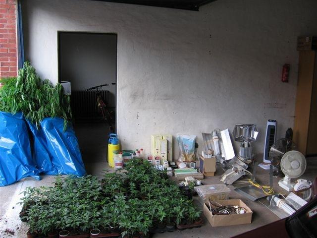 POL-HI: Ausheben einer Indooranlage in Freden/Leine