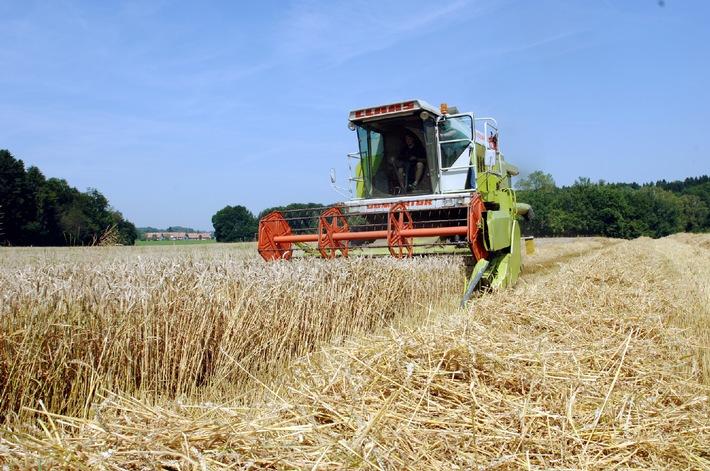 Swissmill setzt voll auf Suisse Premium - Getreide ist nicht gleich Getreide!