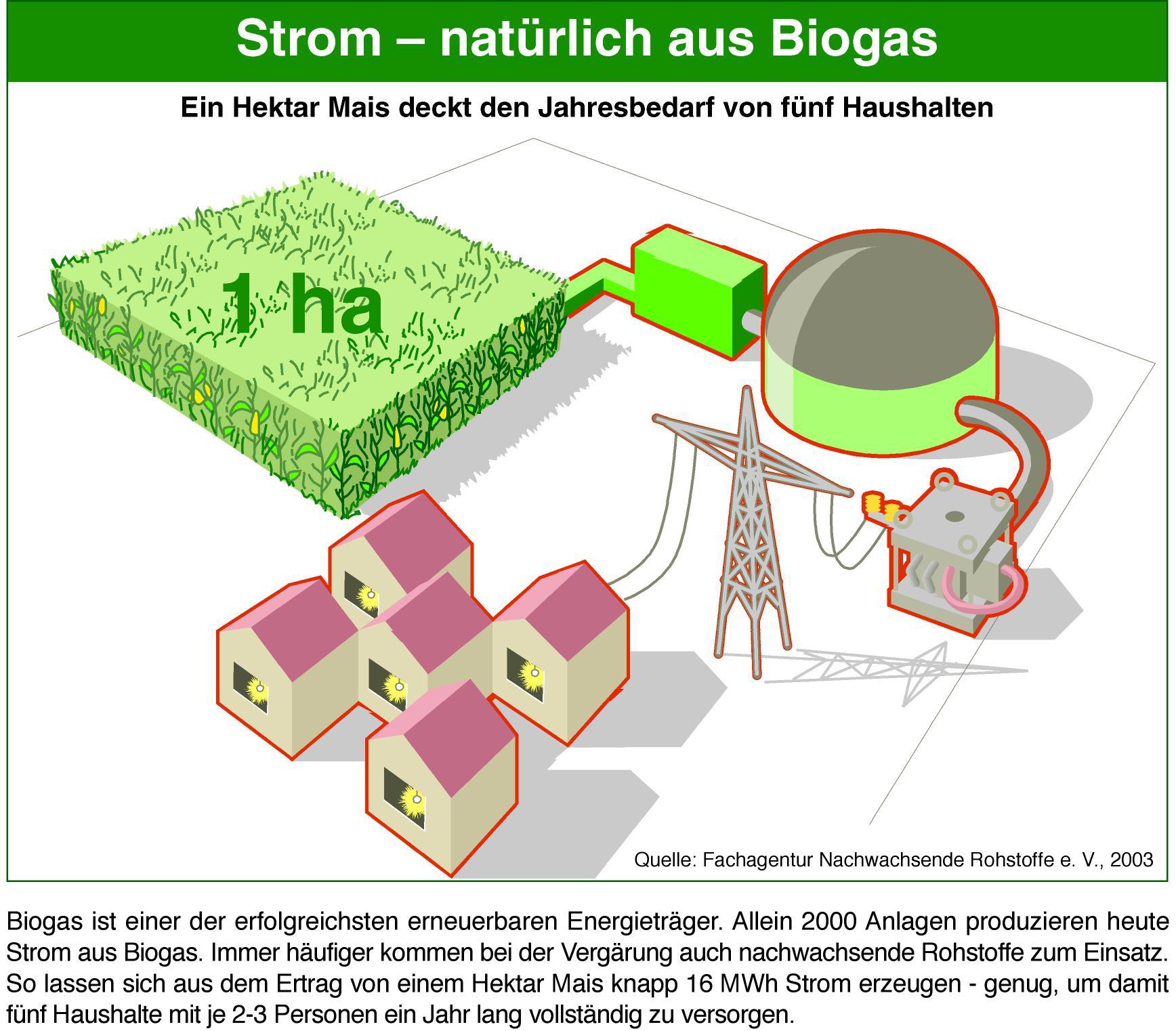biogas der landwirt als stromversorger mehr watt durch mais und co pressemitteilung fnr. Black Bedroom Furniture Sets. Home Design Ideas