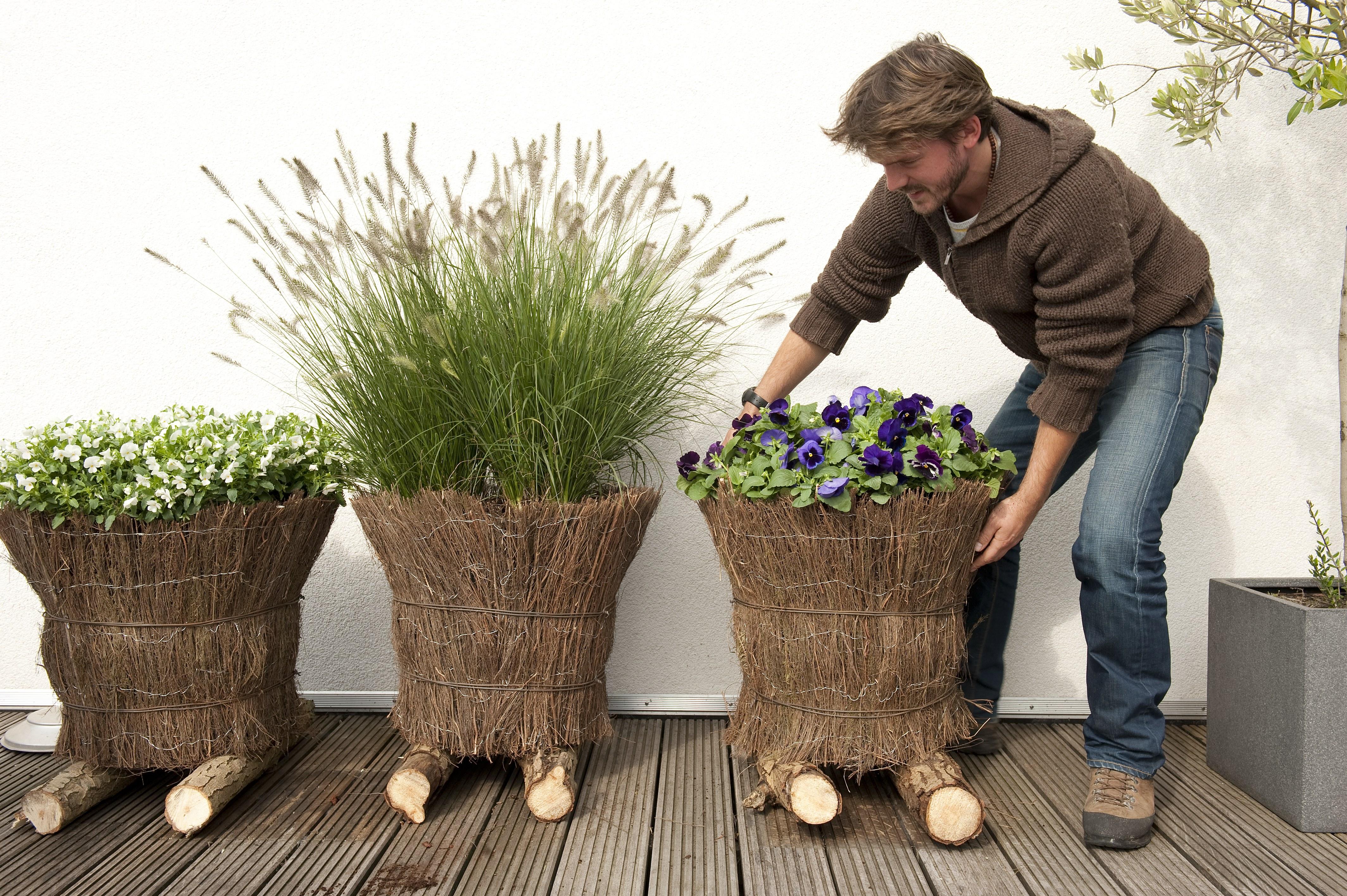 Grüne Oasen Mit Wenig Aufwand Selber Pflanzen Und Bis In Den Herbst Genießen Zeit Für Natur Gartenblüher Auf Balkon Terre Bild